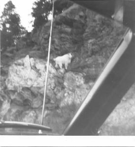 south-dakota-1969-scan_pic0001
